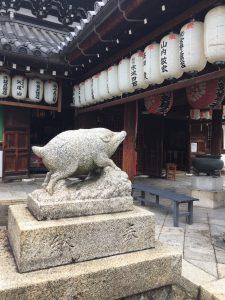 kyoto-inoshishi